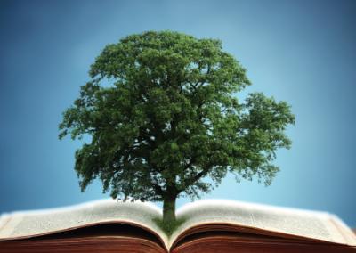 Наука – древо познания